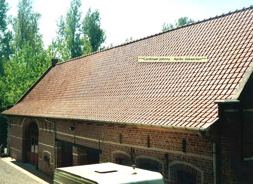 Renovatie van schuur